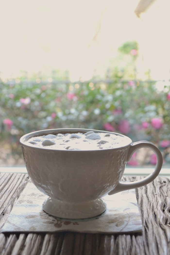 Easy Hot Cocoa for Two // www.thehiveblog.com