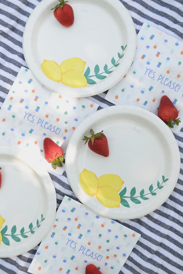 Friday Picnics with the most adorable Cheeky brand paper goods via thehiveblog.com