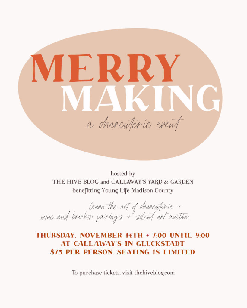 Merry Making: A Wine and Charcuterie Event benefitting Young Life Madison County