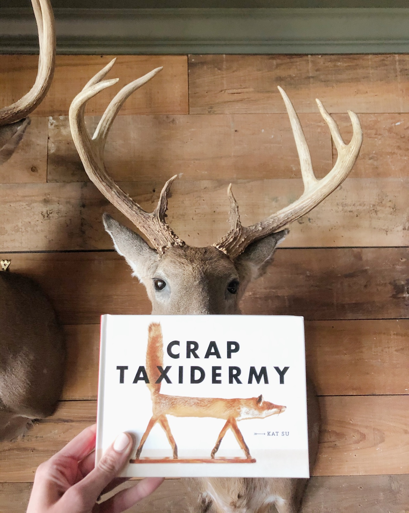 Crap Taxidermy- a great gift for the hunter in your life!