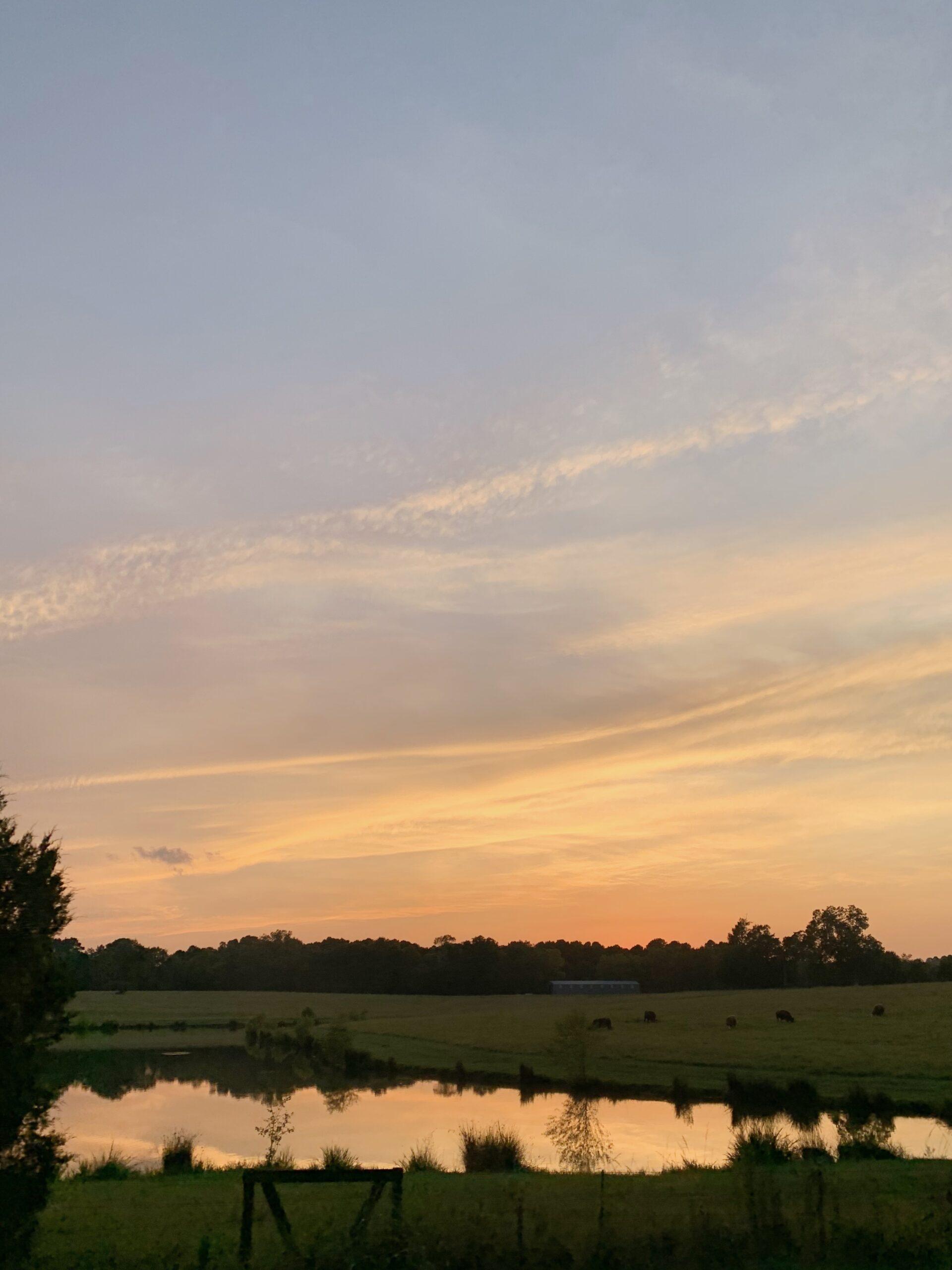Mississippi Sunsets